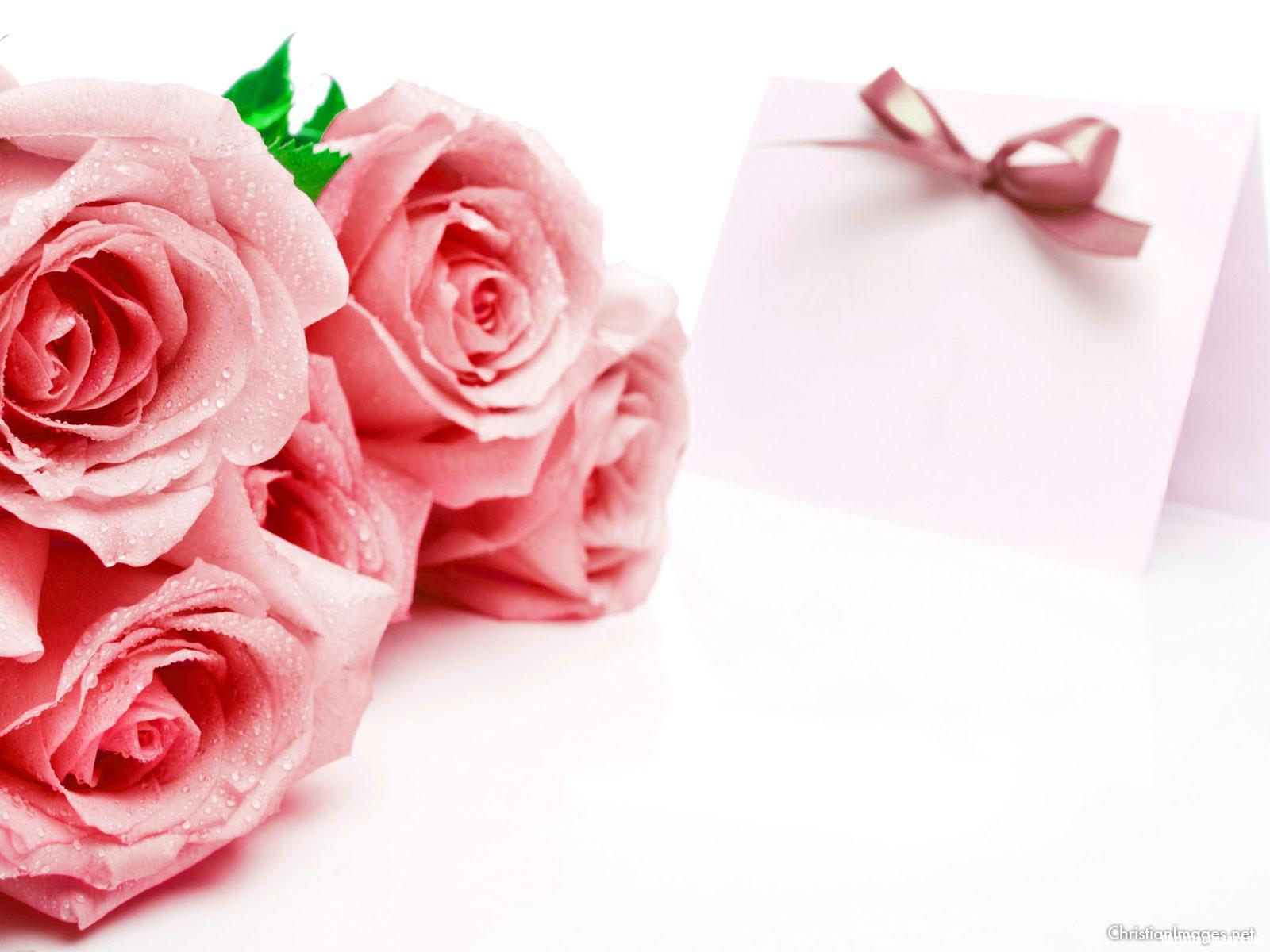 Red Rose Presentation Background